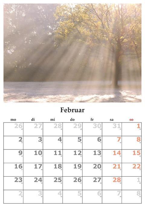 Mois de février